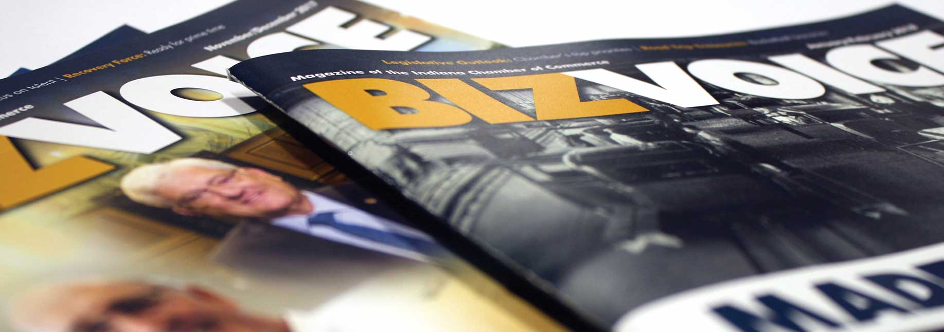 BizVoice Magazine